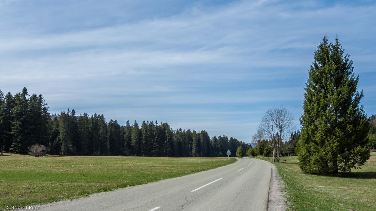 Pogled na idiličnu cestu koja se proteže kroz dolinu u blizini naselja Sunger. Cesta je okružena pašnjacima i gustom šumom. Fotografirano 14.4.2018.
